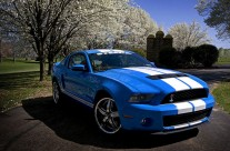 2010 – Shelby GT-500